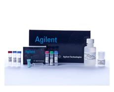 Agilent Technologies Mycoplasma Plus Pcr Primer Set